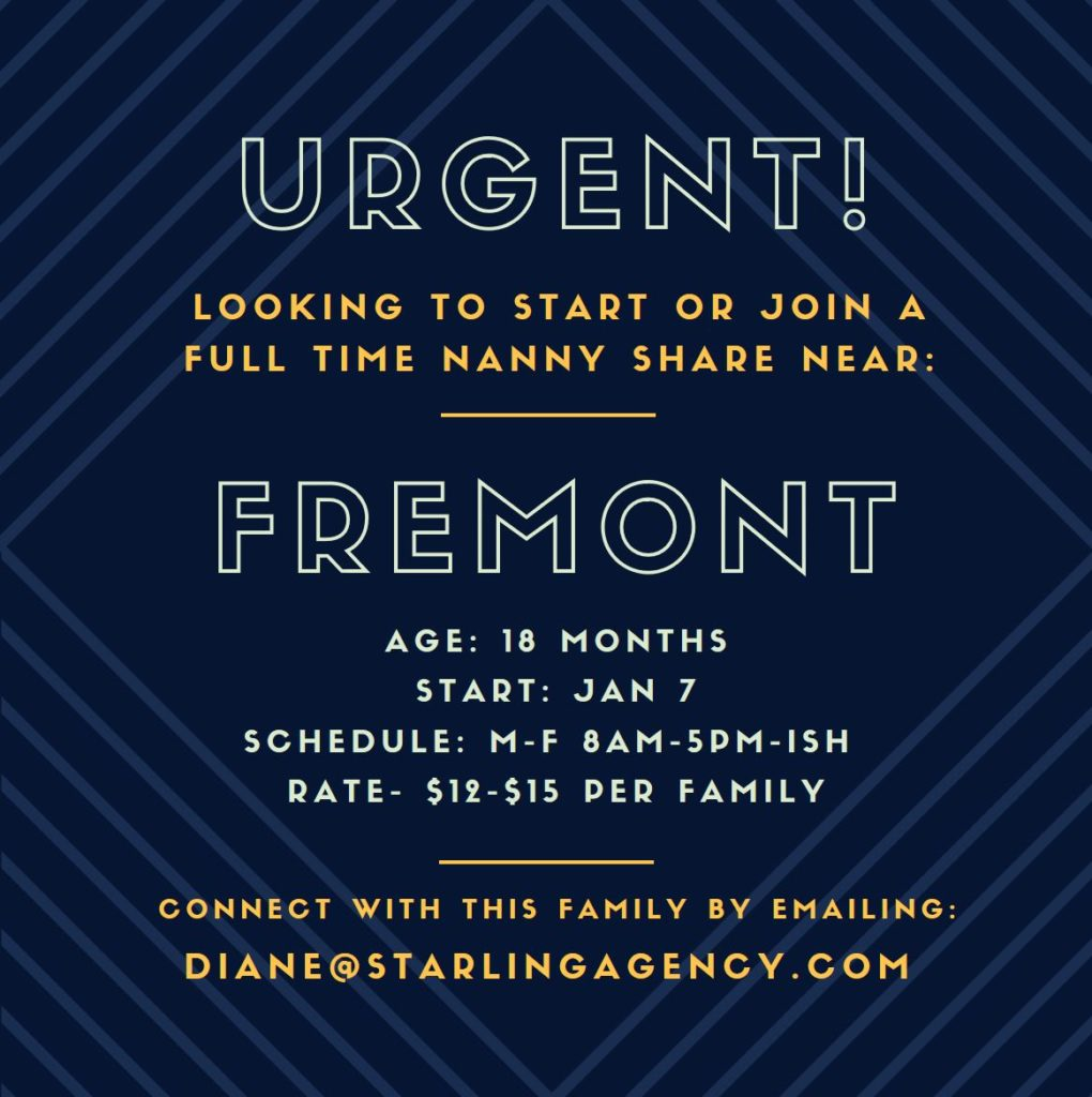 Seattle Nanny Share