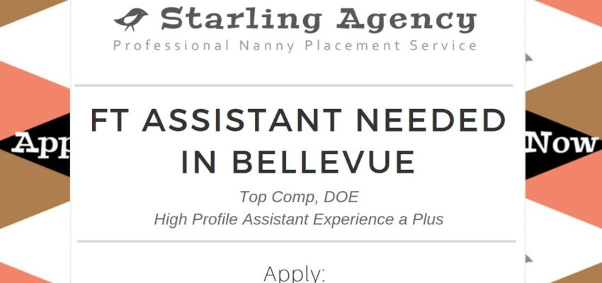 Now Hiring: Full Time Assistant!